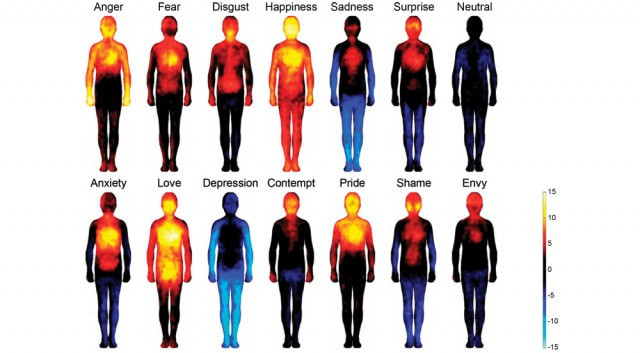 Anger, Fear, Disgust, happiness, sadness, surprise, neutral, anxiety, love, depression, contempt, pride, shame, envy,  human emotions heat map