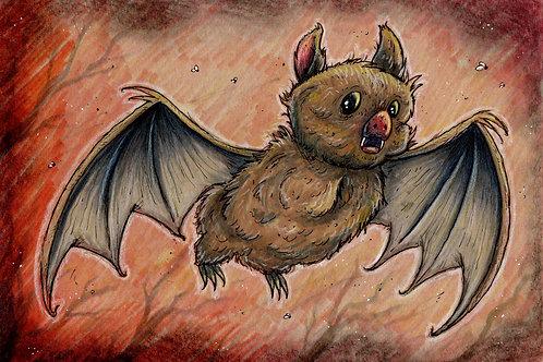 Cute Fruit Bat