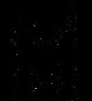 mindmelt logo final.png