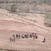 Assisted FMNR demonstration site in Matuu, Machakos County - Seedballs Kenya Beginning  3-