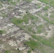 Deforestation - Seedballs kenya.2.jpg