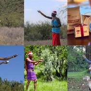 Saruni Lodges Seedballs kenya--.jpg