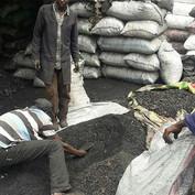 Charcoal seedballs kenya 2--.jpg