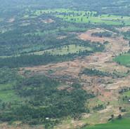 Deforestation - Seedballs kenya.jpg