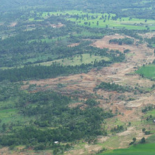 Deforestation - Seedballs Kenya