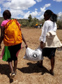 Seedballs Kenya DTB 25-,,.jpg