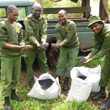 David Sheldrick Wildlife trust - Seedballs kenya -----.jpg
