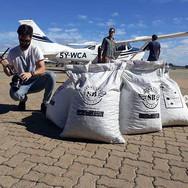 Aerial Seedbombing Seedballs Kenya 1.jpg