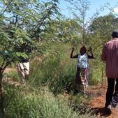 Assisted FMNR demonstration site in Matuu, Machakos County - Seedballs Kenya 3--.jpg