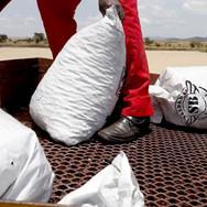 Farmland Aviation Seedballs Kenya 2--.jpg