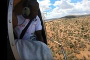 6 month follow up Seedballs kenya DTB Mara Elephant Project 1.jpg