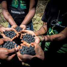 Miti Alliance & Seedballs Kenya