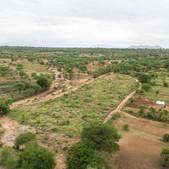 Assisted FMNR demonstration site in Matuu, Machakos County - Seedballs Kenya June 2019--.j