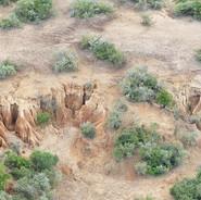 Soil Erosion - reforestation, Seedballs kenya 2-.jpg