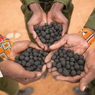 Big Life Foundation Seedballs Kenya 1 Shaun Mausley--.jpg