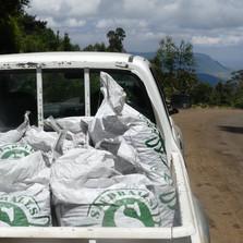 Eden Project & Seedballs Kenya