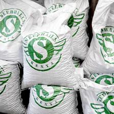 Seedballs Kenya - reforestation, deforestation, environment, co2, carbon footprint nairobi