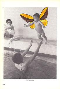Prendça Anne Geddes 2.jpg