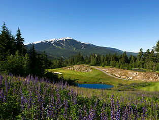 Leadbetter Golf Academy Technology