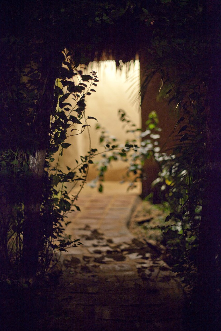 Detail at night