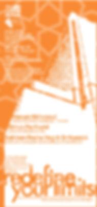 mqp flyer.jpg
