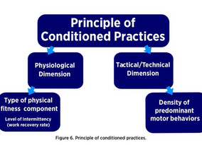 Physical Demands of Your Style of Play