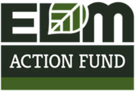 ELM Action FUnd.png