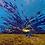 Thumbnail: Holkham Splash