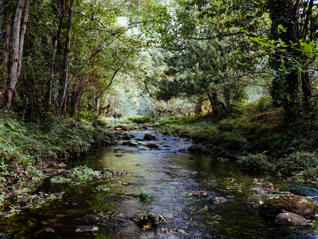 The Five Rivers of a Healthy Spirituality (with or without God!)
