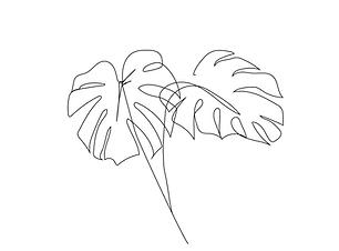 botanical illustrations-10.png
