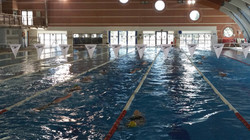 BU swim