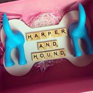 HarperandHound.JPG