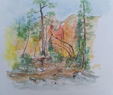 Creekside in Flagstaff