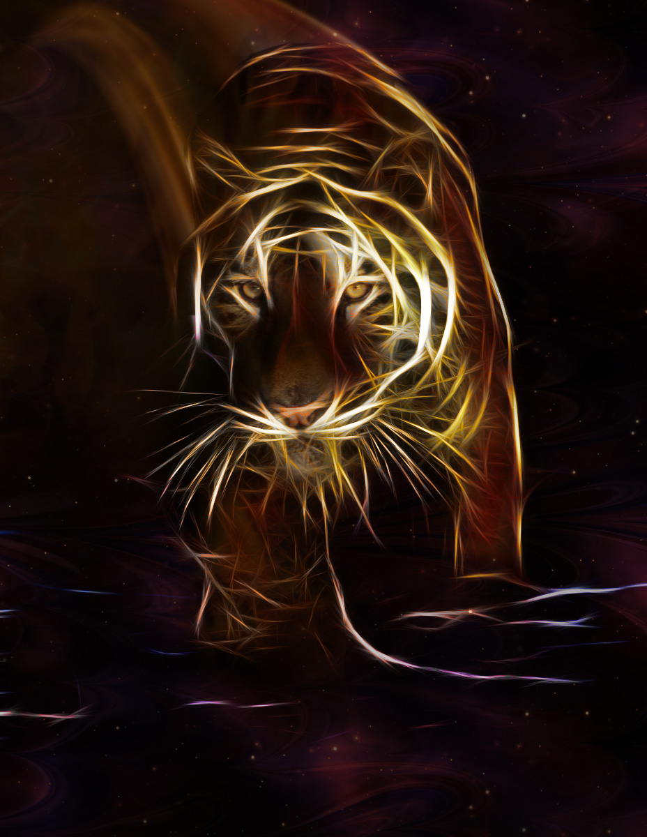 Fractal Tiger in Space
