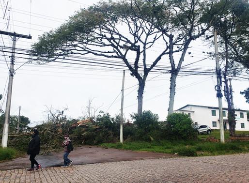 Ciclone bomba deixa estragos na região