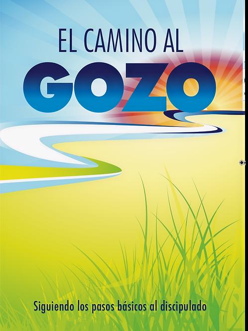 Camino al Gozo