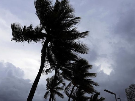 Detrás de Irma y Harvey