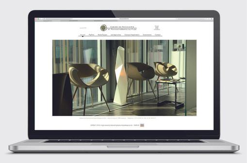 Psyflon web site