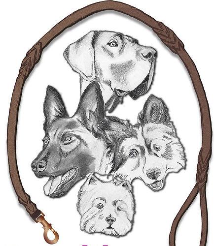 dog-leash-JPG_edited.jpg