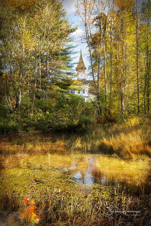 "Church in the Woods 24"" x 36"" Metal Print"
