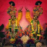 Sri Sri Chaitanya Nitai