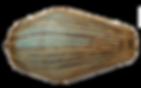 Mridanga - Traditional Indian Drum