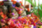 shila_flowers.jpg
