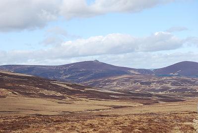 deer stalking, scottland, red deer, stalking, highland