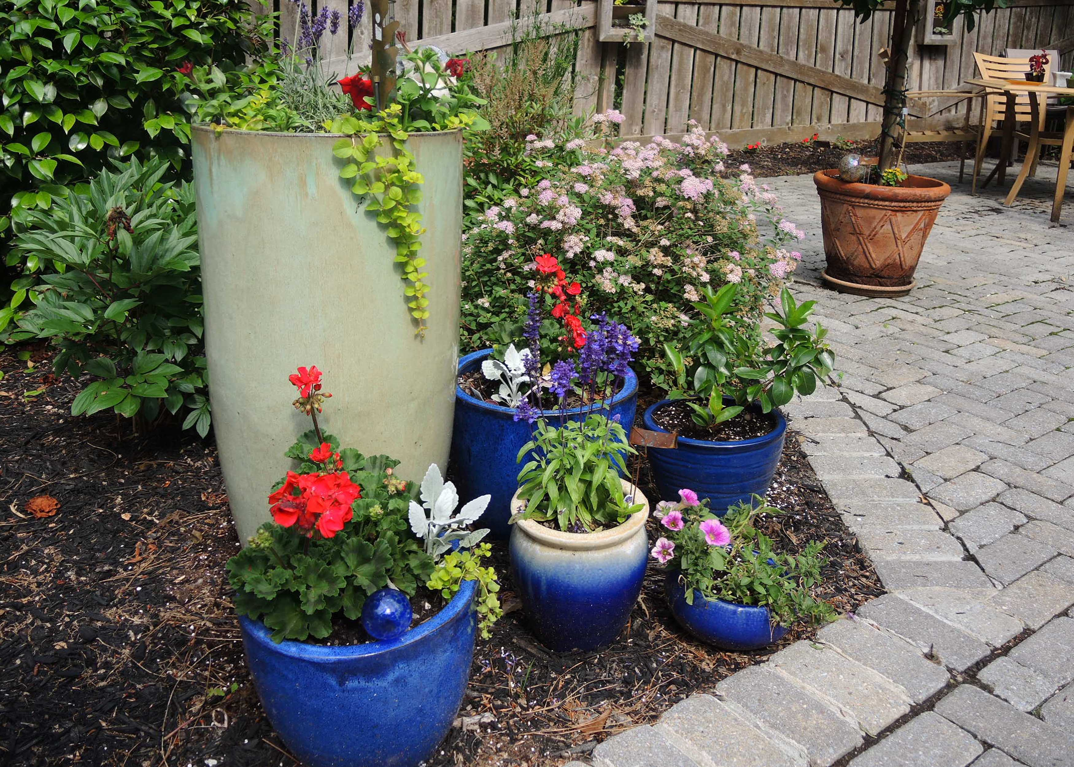 DSCN0179 - collection of flower planters.jpg