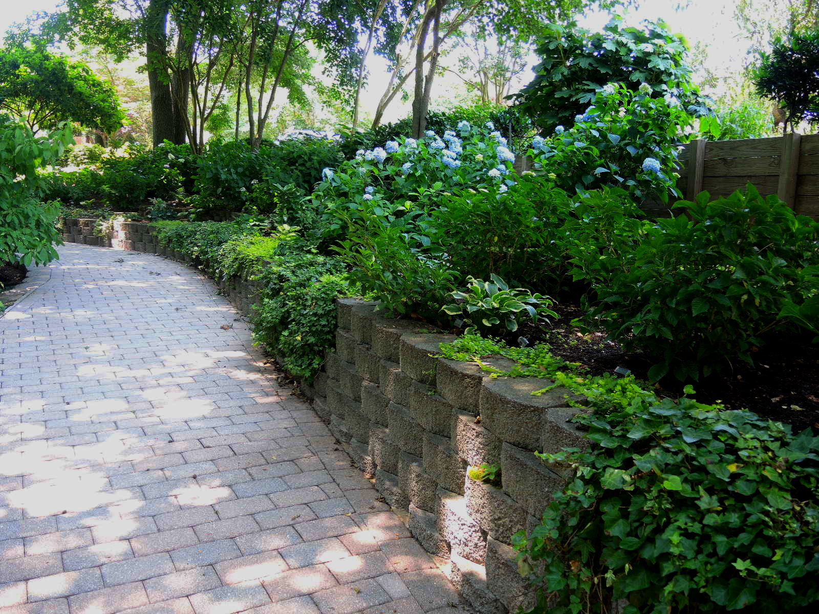 DSCN9955_-_garden_walkway[1].jpg