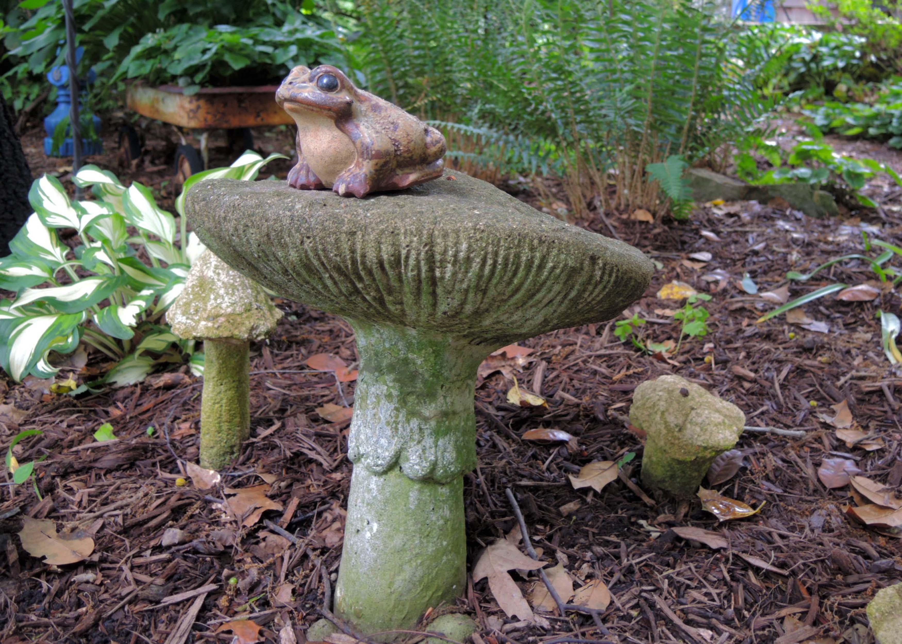 DSCN9888 - Sandi - frog on cement mushroom.jpg