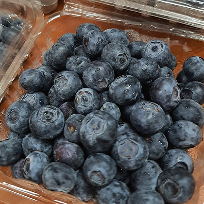 US Blueberry (pack)