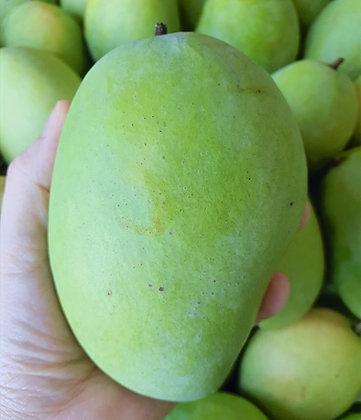 Carabao Mango (kg)