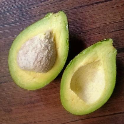 Davao Lagkitan Avocado